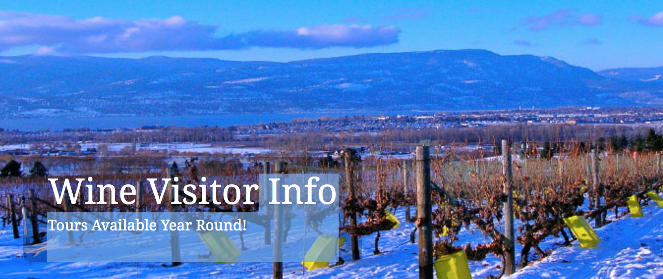 Warm Up to Winter – The Platinum Experience winery tours