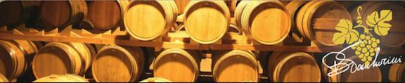 A day spent with Italian winemaker Barbara Tamburini