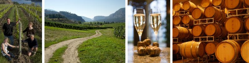 Blue Mountain Tasting Room now Open for the Season
