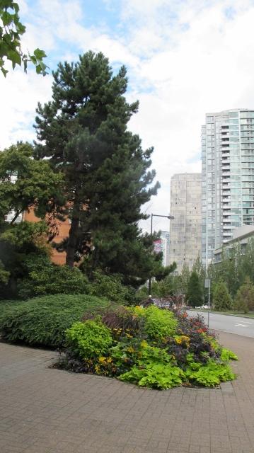 The attractive neighbourhood of Yaletown