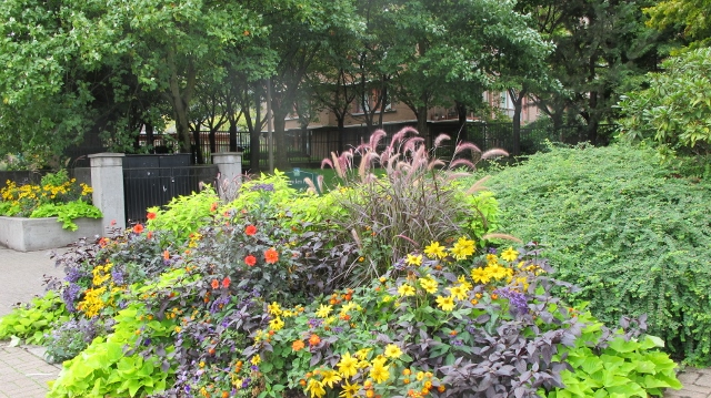Flower beds and greenery intensifies in light rain