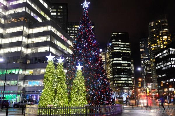 50 ft Christmas tree at Jack Poole Plaza