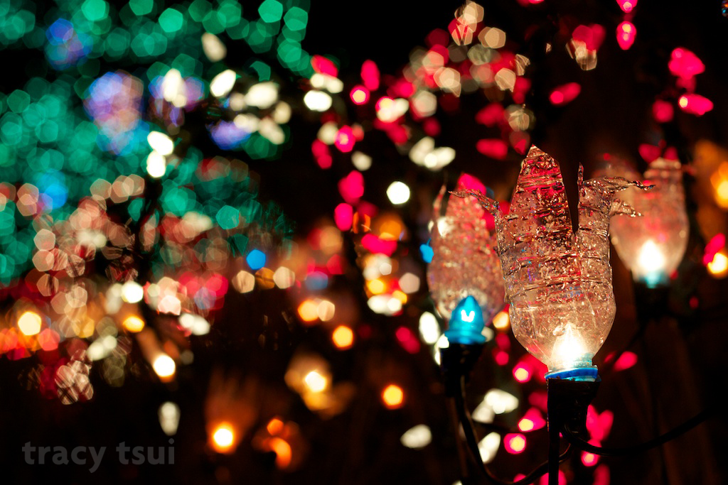 Festival of Lights at VanDusen Gardens