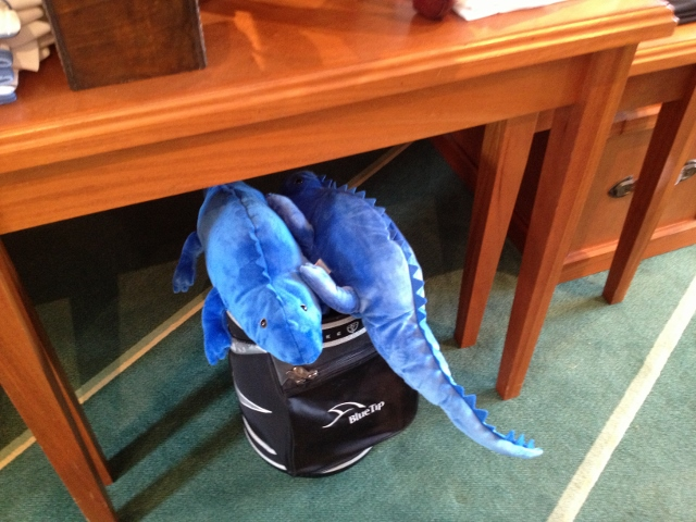 Part of proceeds from blue iguana head covers at Blue Tip golf support their recovery - RBuchanan photo