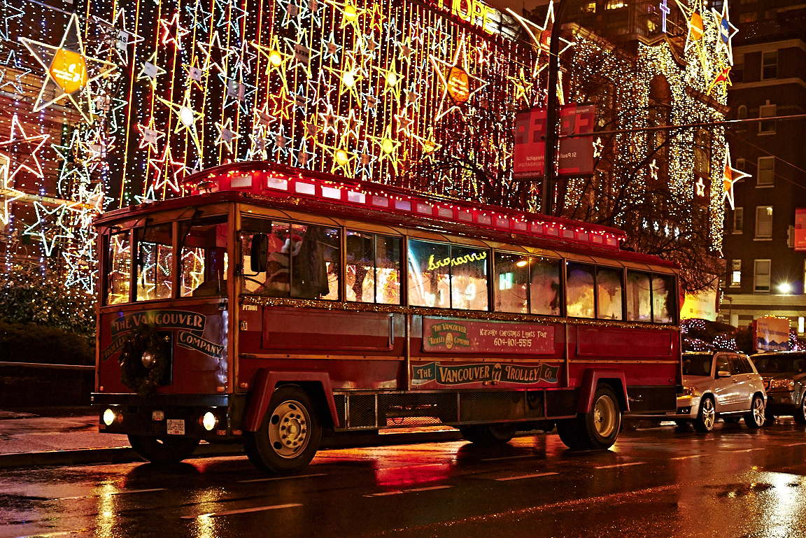 Christmas Lights Park