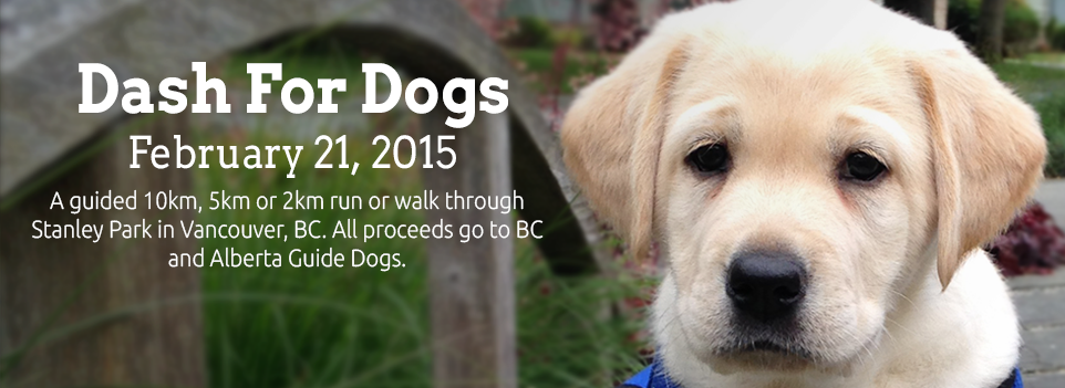 RunGo Dash for Dogs February 21st