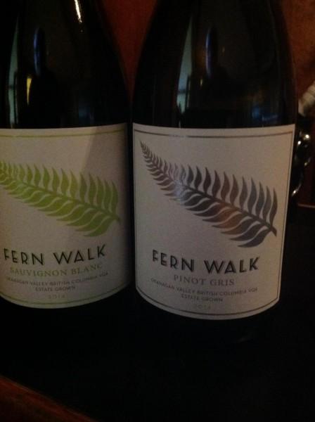 Fern walk