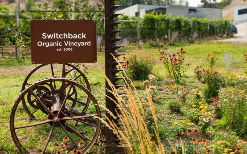 Haywire Vineyard Now Officially Certified Organic