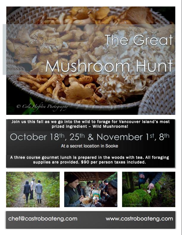Mushroom Hunt Image