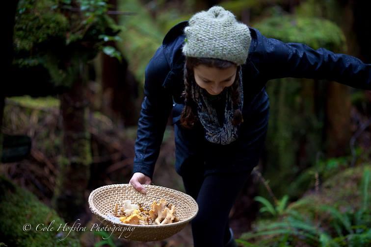 The Great Mushroom Hunt 2014