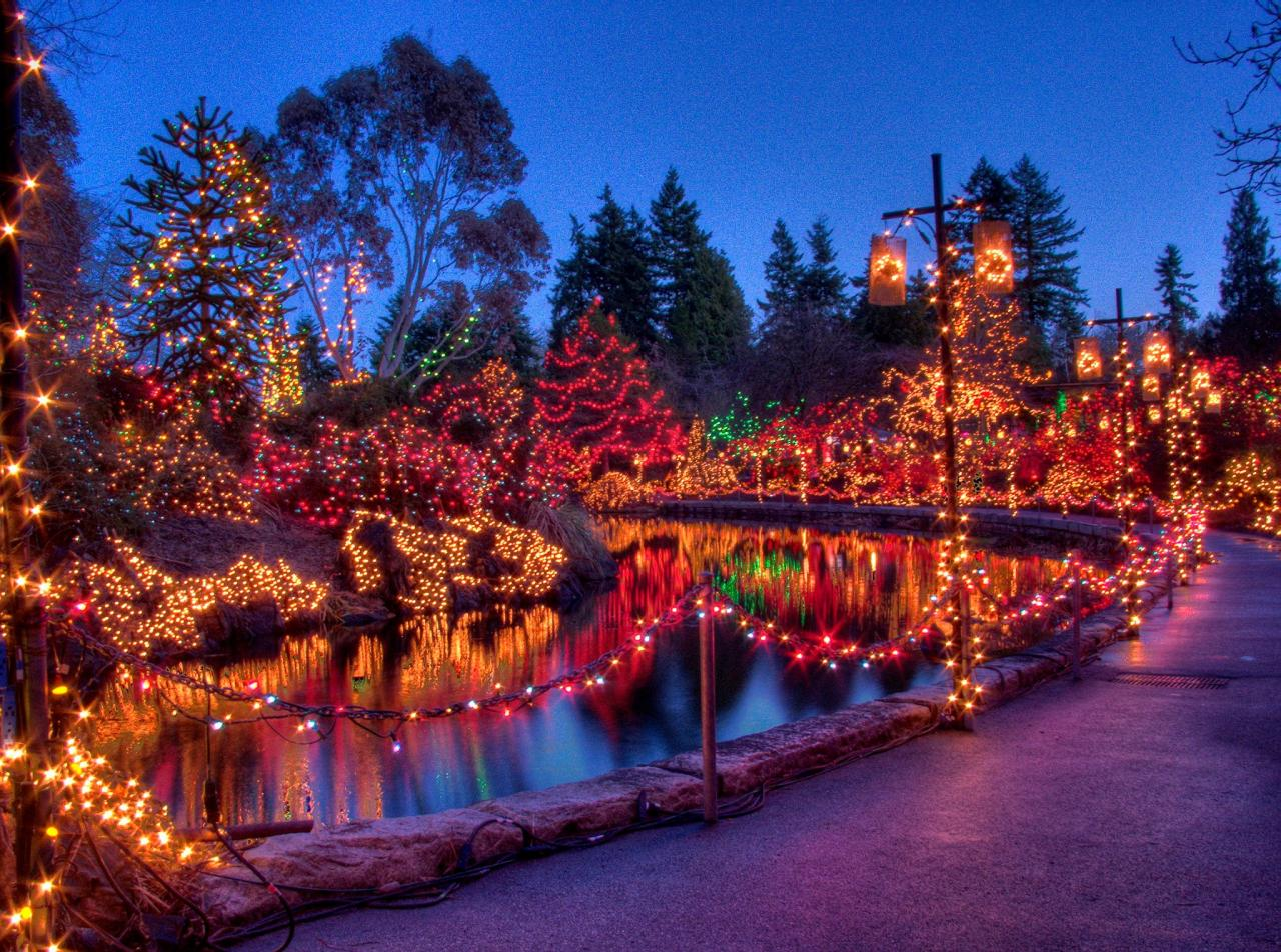 It's the most wonderful time of the year … at VanDusen Festival of Lights