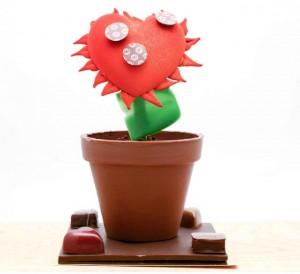 thomas haas cactus