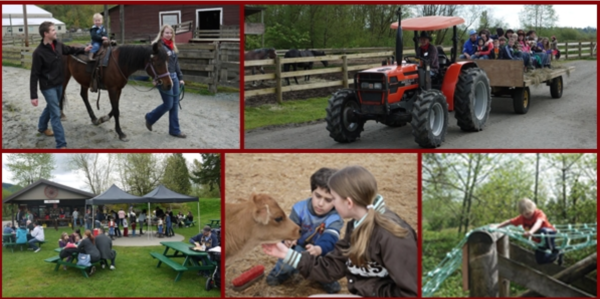 timberline family festival