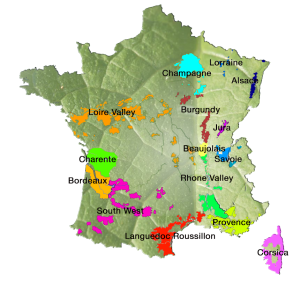apvsa wine map