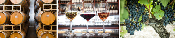 From the Vine to the Glass – Tinhorn Creek Offers New Tours and Tastings
