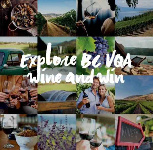 wine-explore