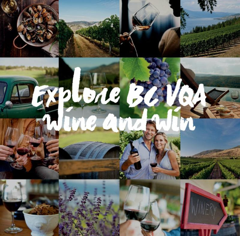 Wines of British Columbia Launch New Seasonal Campaign  Explore BC VQA Wine
