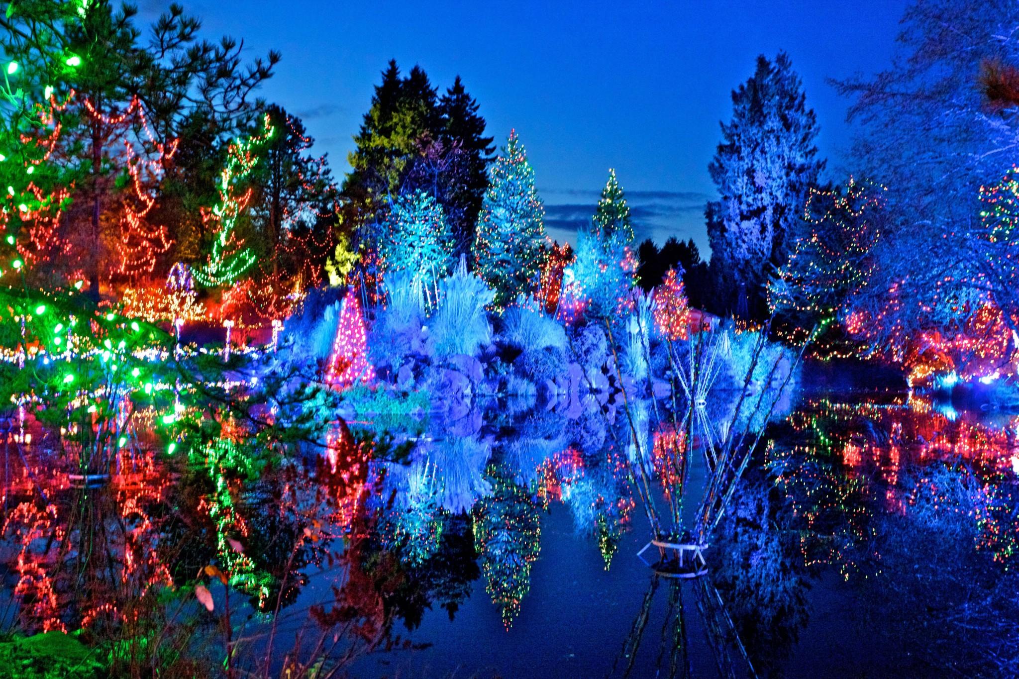 Festival of Lights at VanDusen Botanical Gardens