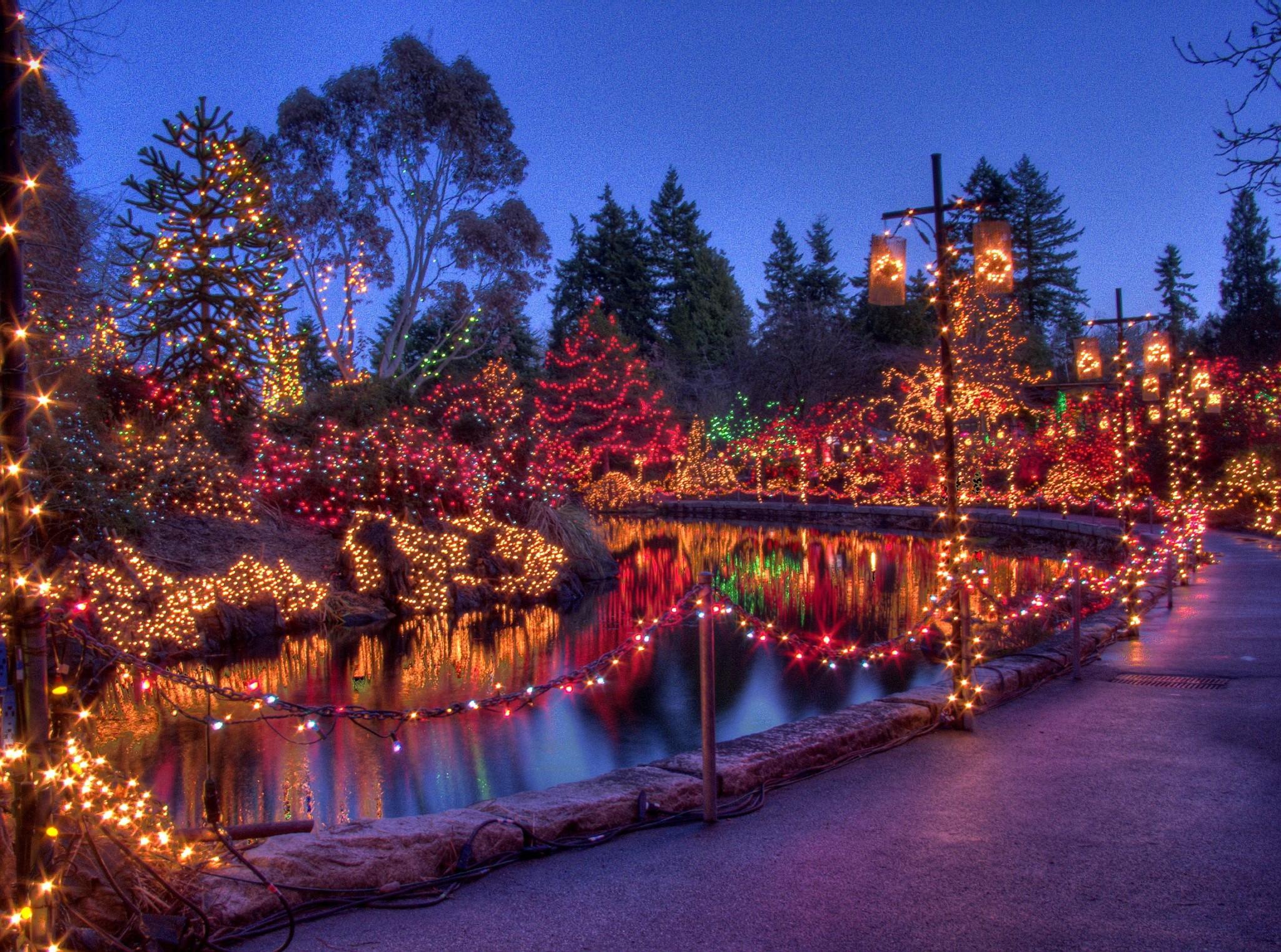 Festival of lights at vandusen botanical gardens my van city - Garden of lights botanical gardens ...