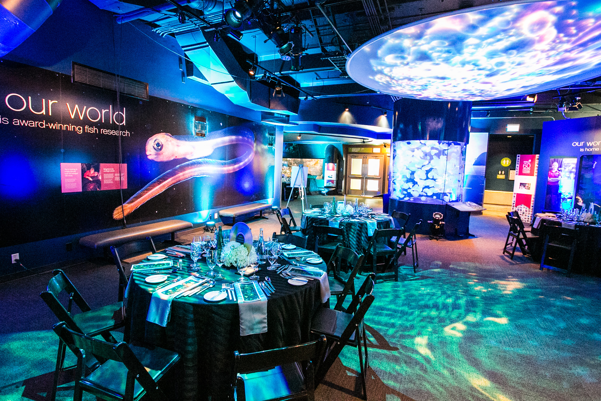 Celebrate Our Coasts And Canada S 150th Anniversary At Vancouver Aquarium S Night At The