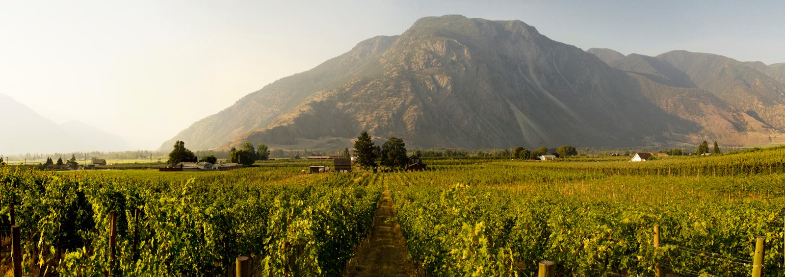 Similkameen Wineries Association becomes Similkameen Independent Winegrowers as it evolves its brand identity.