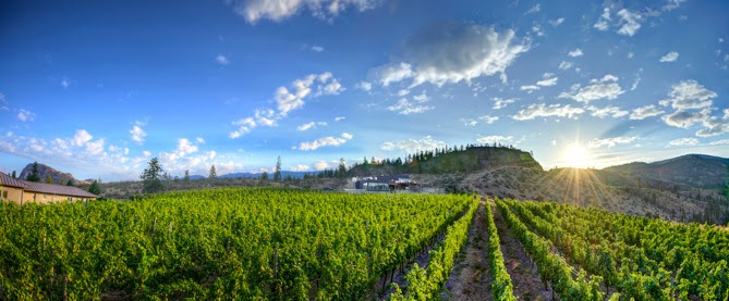 FIRST ANNUAL ART & WINE IN THE VINES INVITES GUESTS TO EXPERIENCE THE BEST OF THE OKANAGAN VALLEY