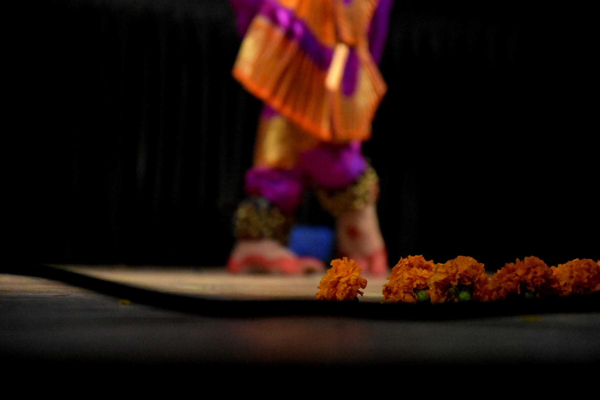 Sudnya Dance Academy's 20th anniversary show celebrates 150 years of Indian heritage in Canada
