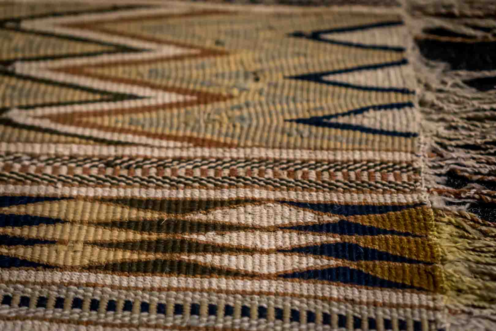 """""""The Fabric of Our Land: Salish Weaving"""""""