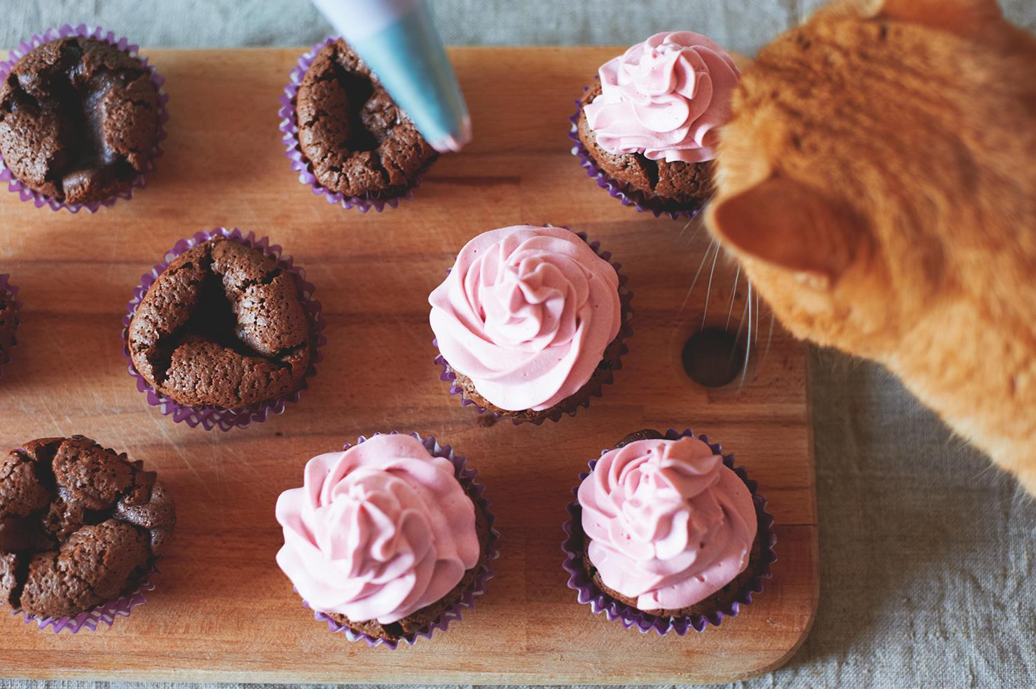 Help animals by baking a difference for BC SPCA's National Cupcake Day™