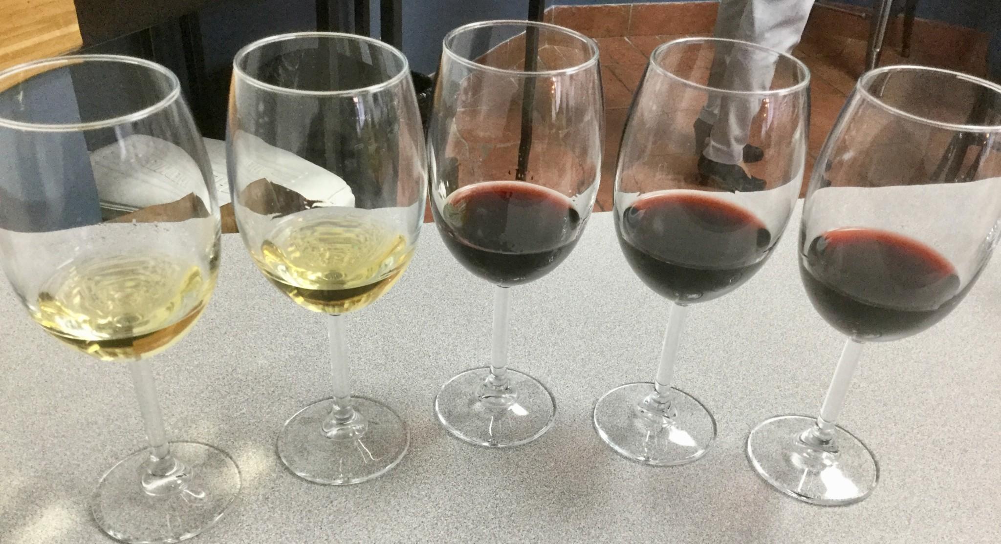 Wine Reviews: Three Gamays, Two Rieslings