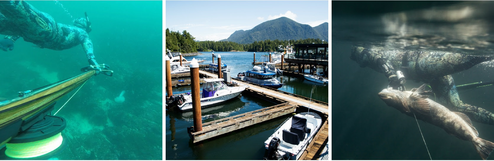 Tide to Table: Tofino Resort + Marina offers guests the fundamentals of freediving and marine-harvesting