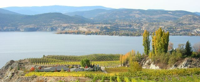 Friday, April 13 was one of the luckiest days of the year so far for #BCWine Lovers