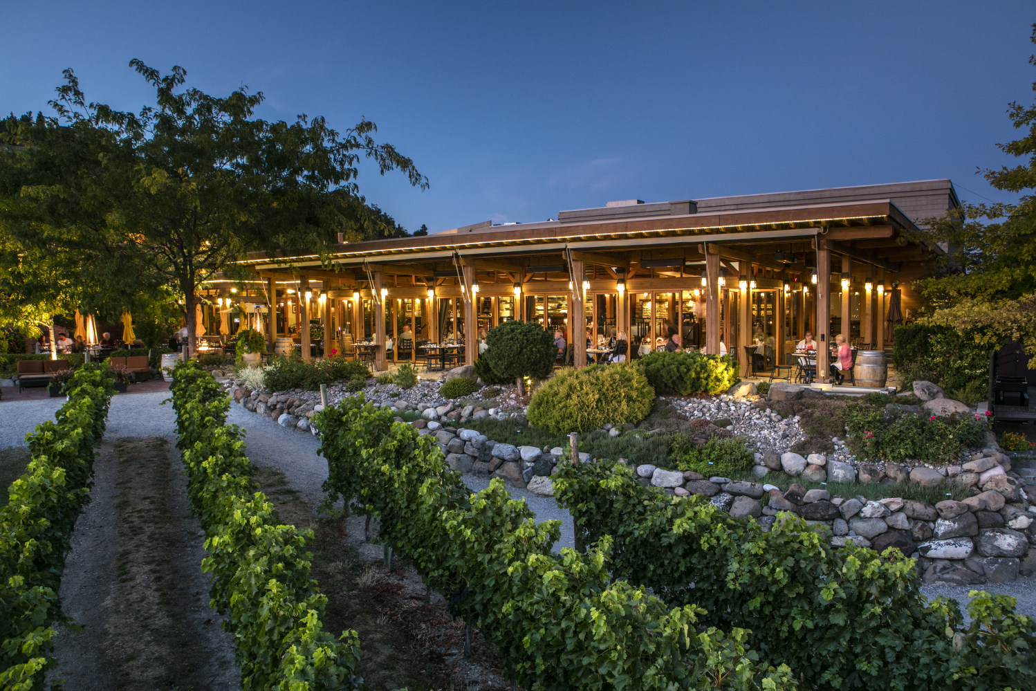 Dine in one of the best restaurants in the Okanagan – Old Vines Restaurant at Quails' Gate