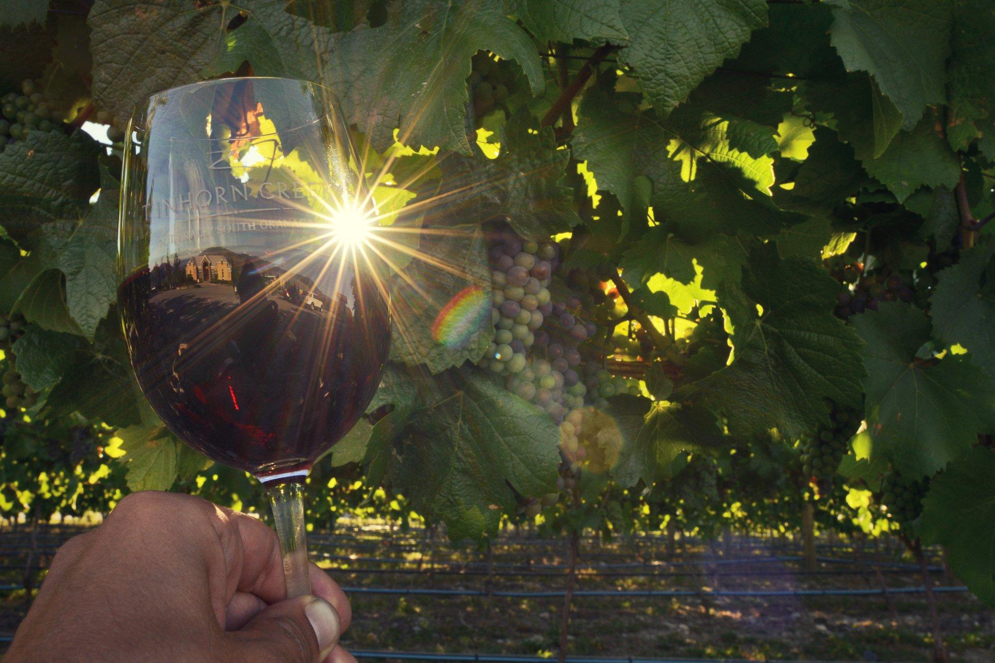 Whirlwind Okanagan Trip Wine Tasting Experiences – Tinhorn Creek