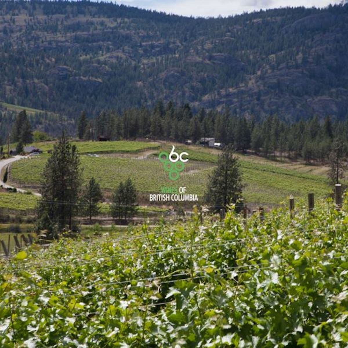 Okanagan Falls Wineries Association the second sub-appellation in British Columbia