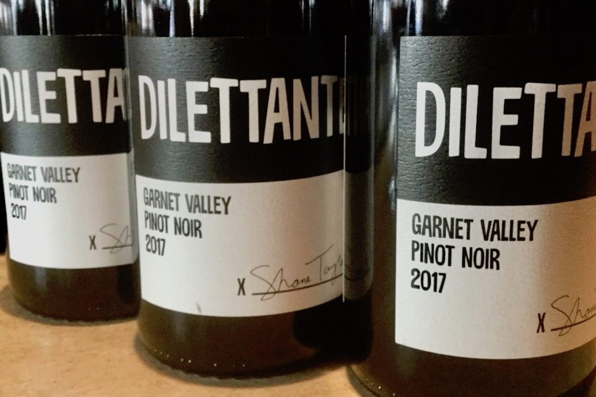 CinCin and the Release of Shane Taylor's Dilettante Pinot Noir