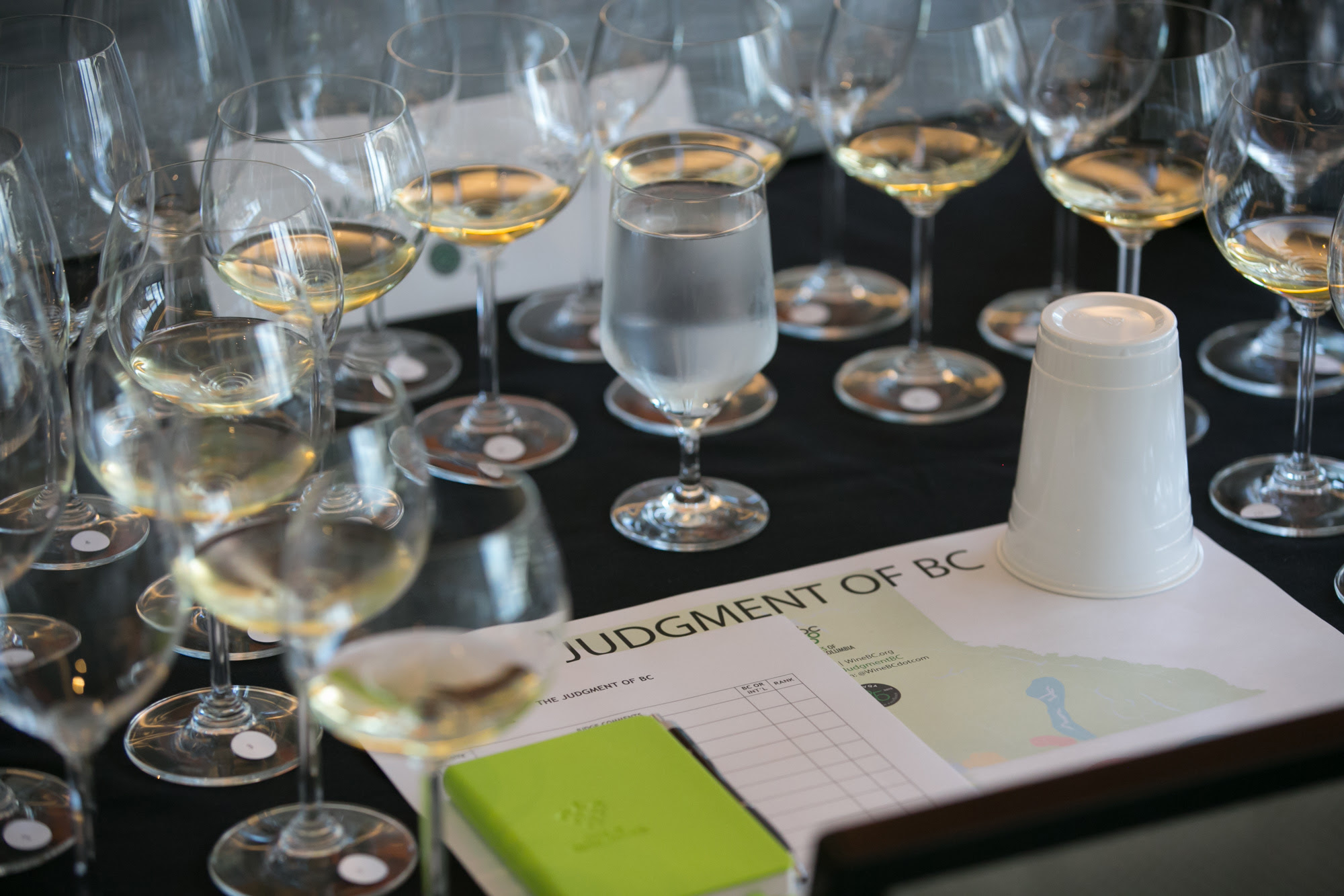 The Wines of British Columbia Stand up to the World at the Fourth Annual Judgment of BC