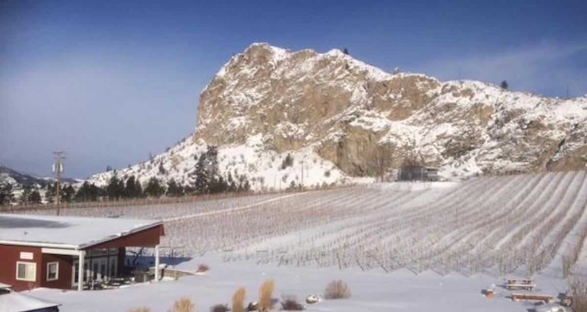 #FavouritesThings Holiday Gift Suggestions – Meyer Family Vineyards