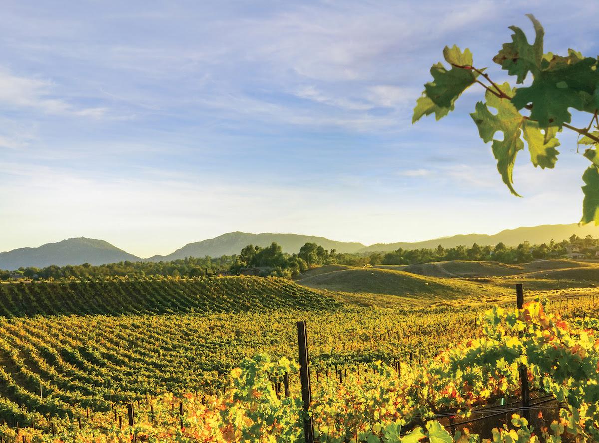 Wine Enthusiast Names Temecula Valley in the 2019 10 Best Wine Getaways List