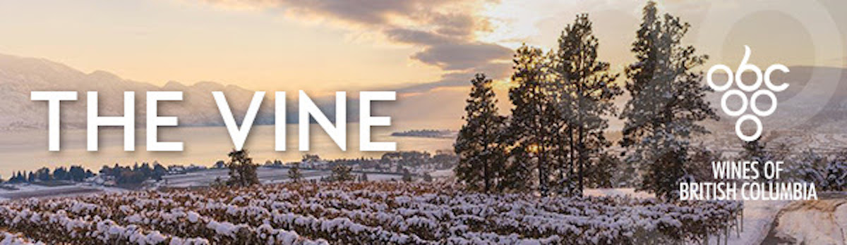 Chef Meets BC Grape 2019 – Last chance to save!