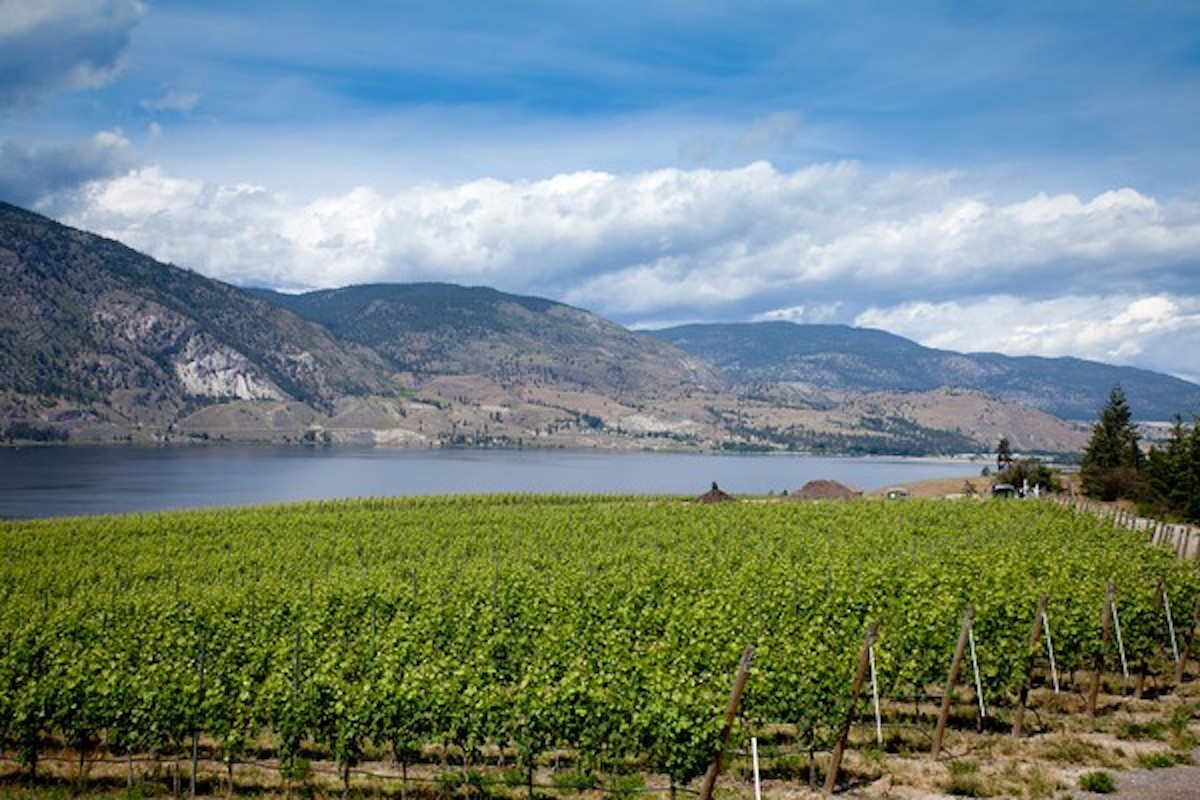 Top Okanagan Falls' Wines Poured at Spring Tasting in Vancouver