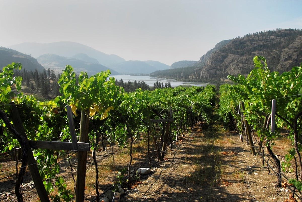 Okanagan Falls and Skaha Lake Spring Release Wine Tasting 2019