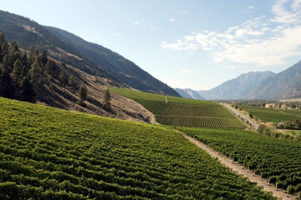 Join Master Winemaker Howard Soon for a Wine Dinner featuring Vanessa Vineyard at Glowbal March 26