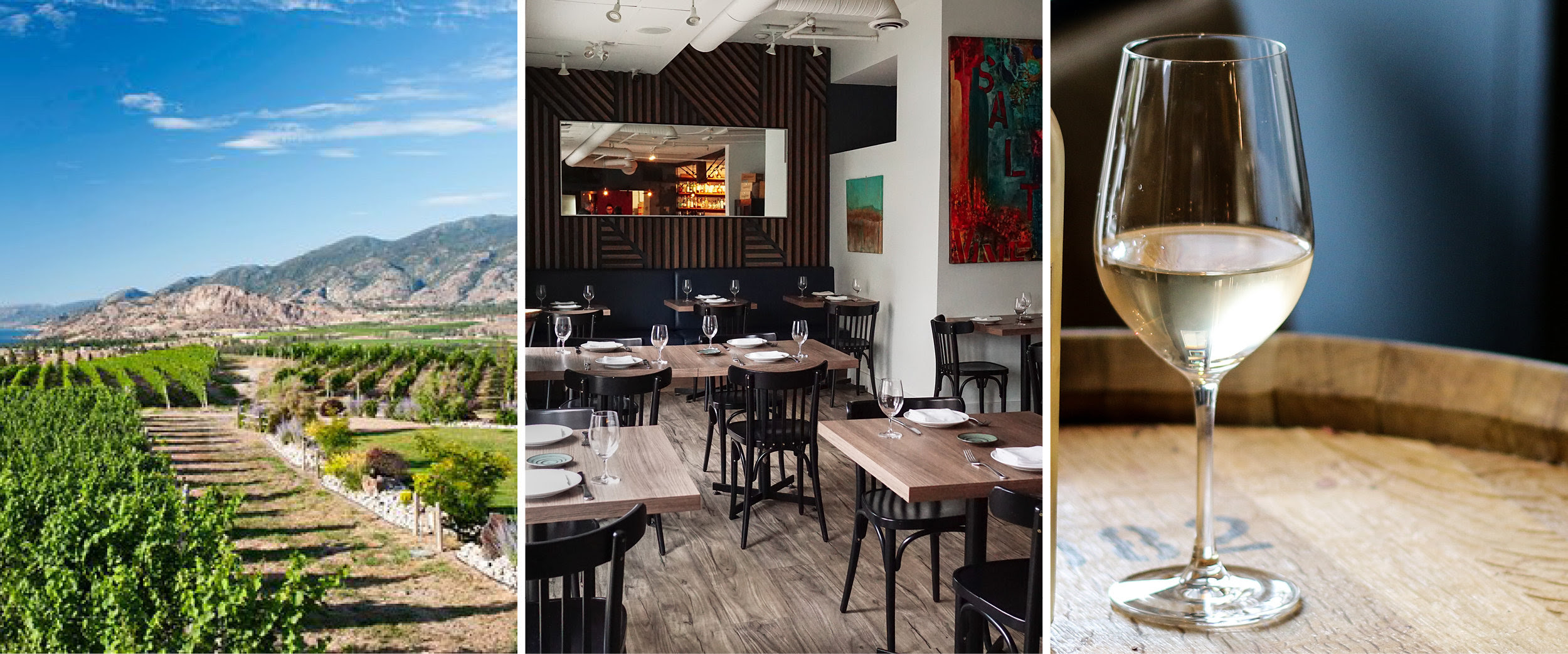 The Salted Vine Kitchen + Bar Hosts Exclusive 'Wines of BC' Dinner on May 2