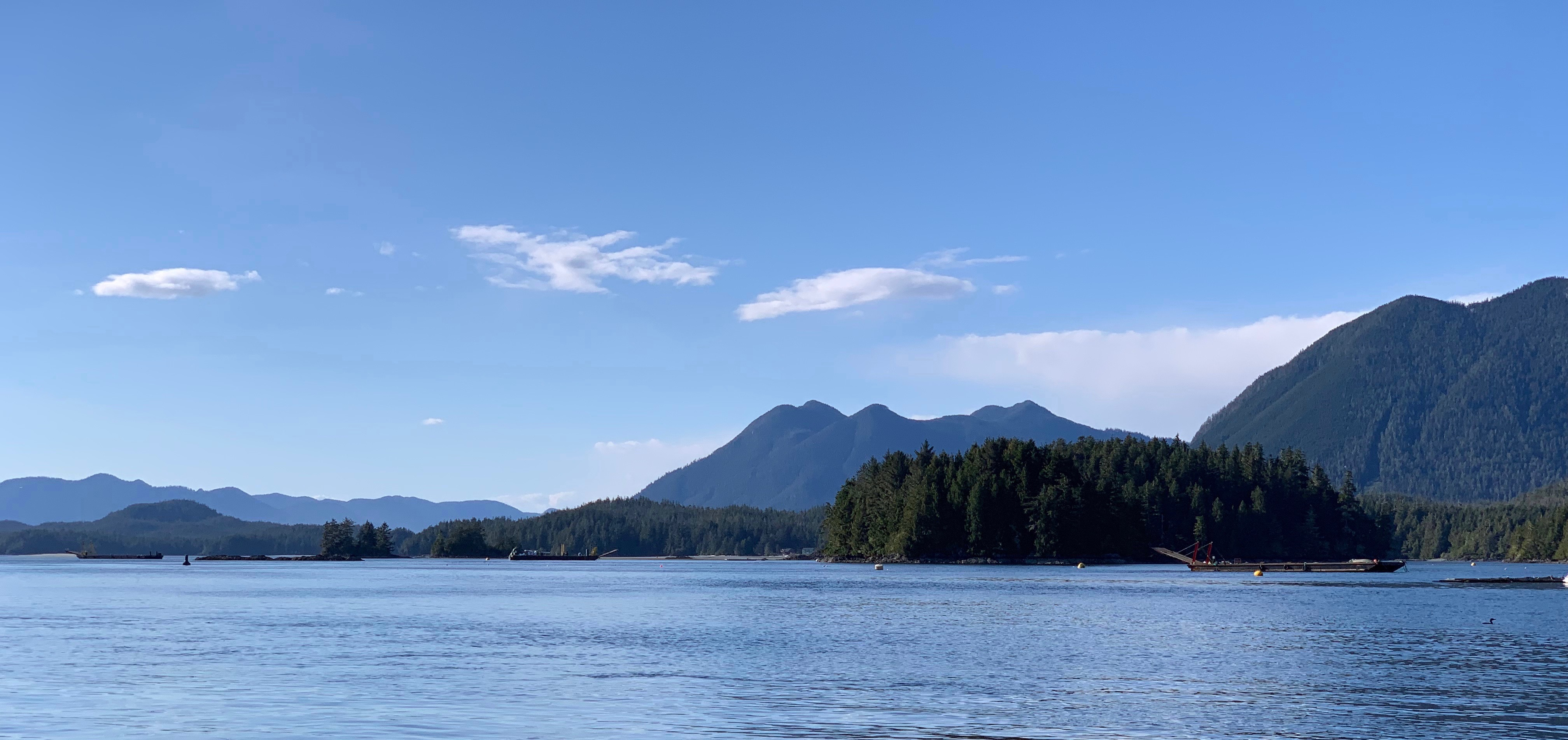 Tofino Resort + Marina – Inspired by Adventure, Surrounded by Natural Beauty