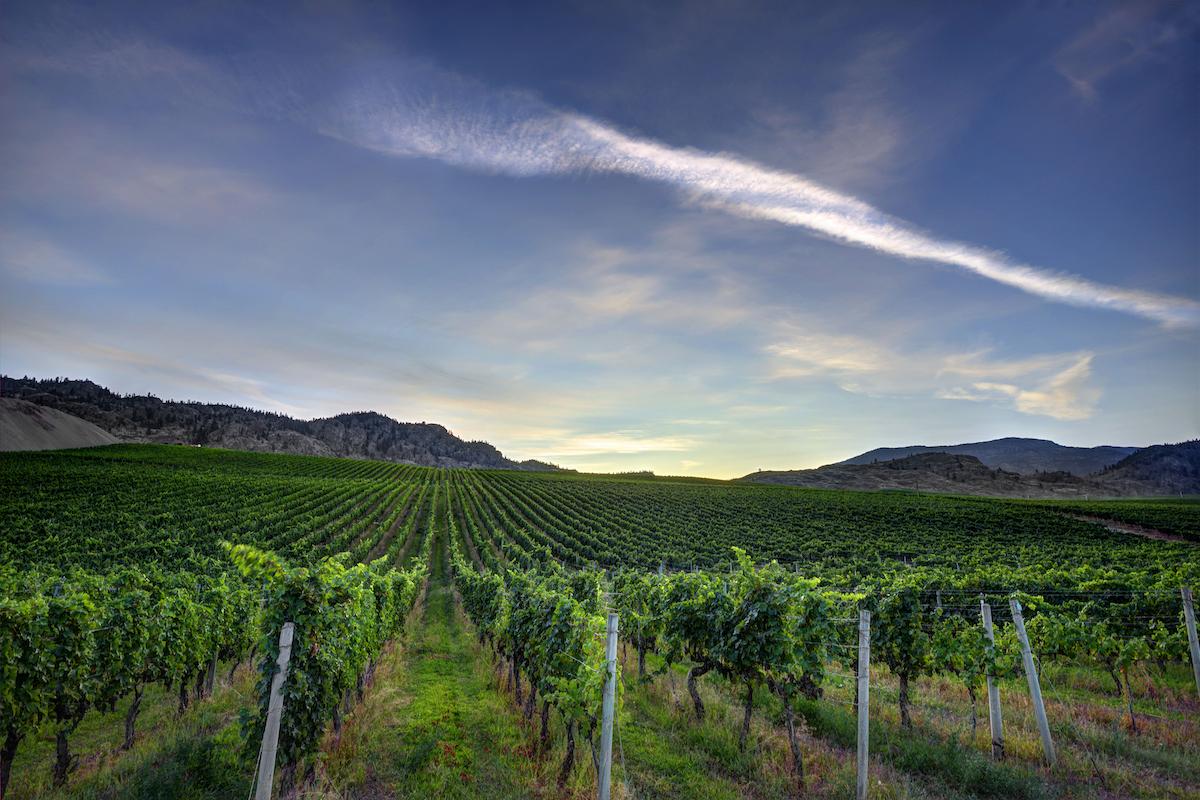 Hawksworth Restaurant kicks off monthly winemaker dinner series with Phantom Creek Estates