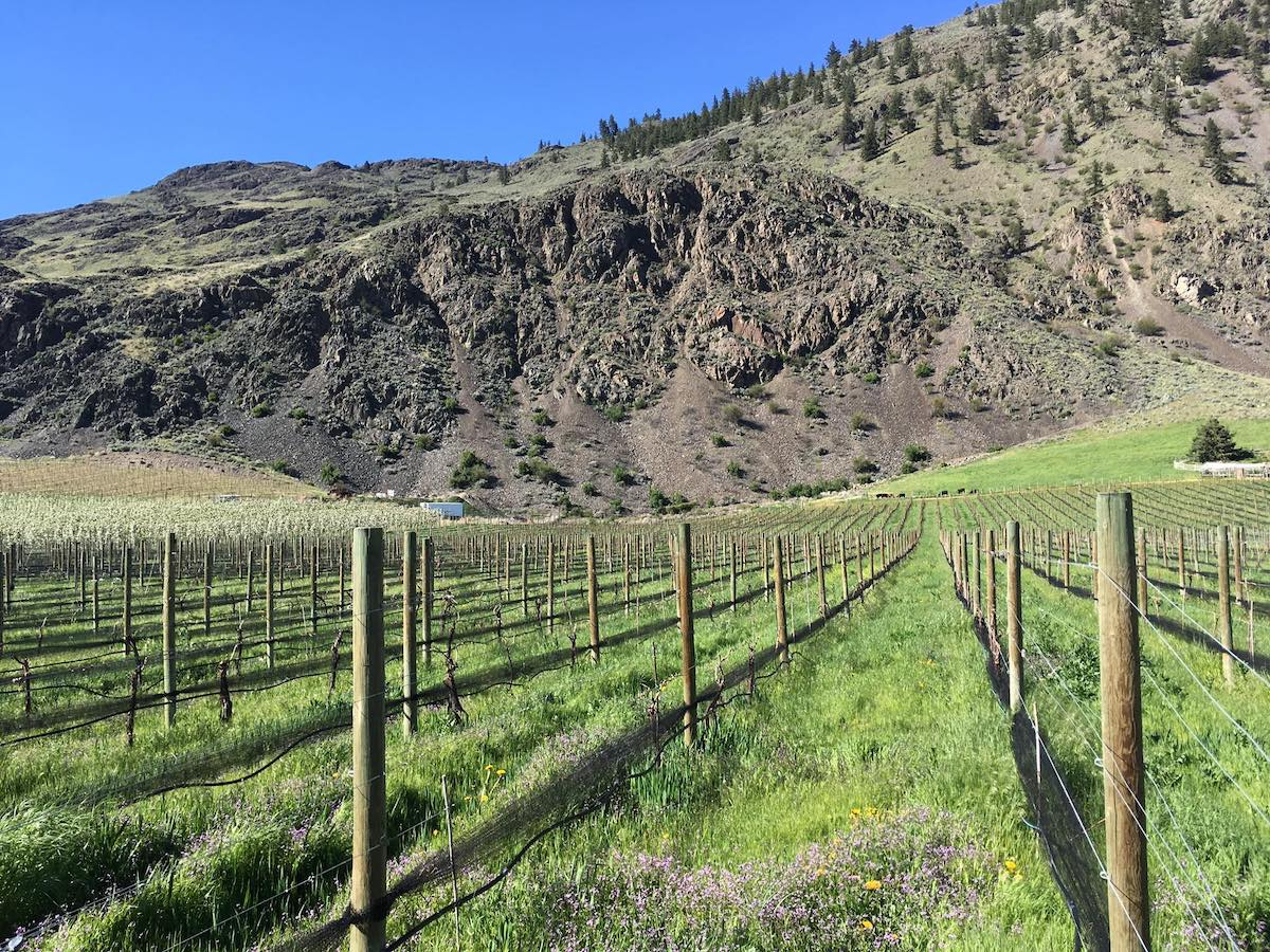Continuing on our Journey to the Similkameen a stop at Clos du Soleil Winery