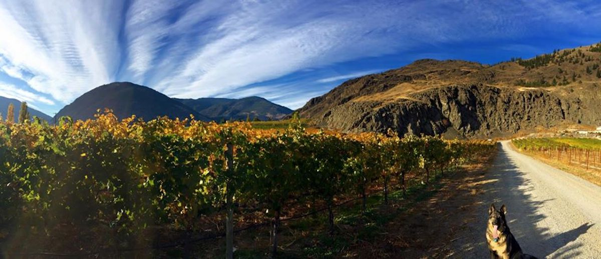 My First Visit to Corcelettes Estate Winery – Love It Here in the Similkameen!