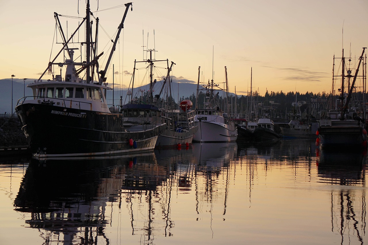 Jumpstart Your Summer Fun with the New Comox Harbour Dock Days! June 8 – 9