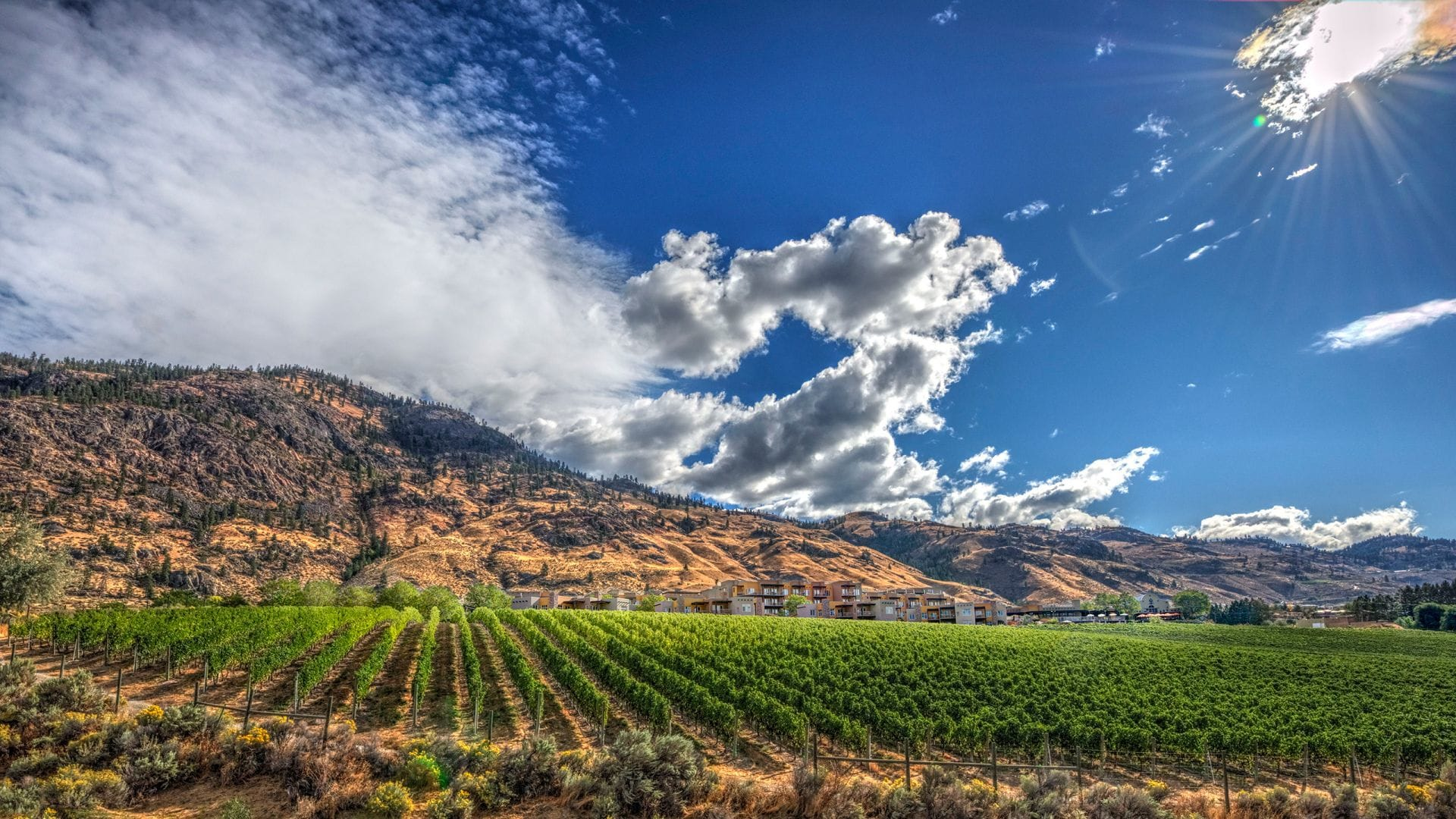 Why you should stay at Spirit Ridge Lake Resort in Osoyoos